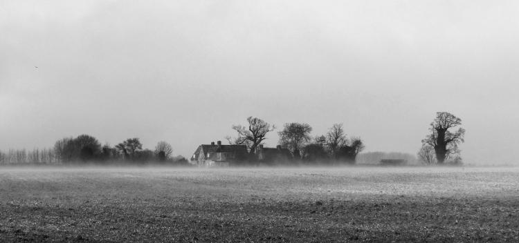 Farm mist