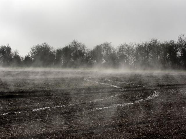 Filed mist