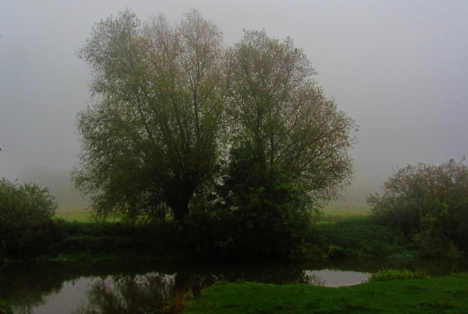 Granchester Meadows - a grey and cheerless dusk which Hardy would have appreciated.