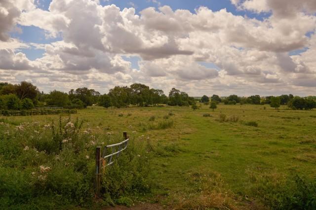 A toft meadows