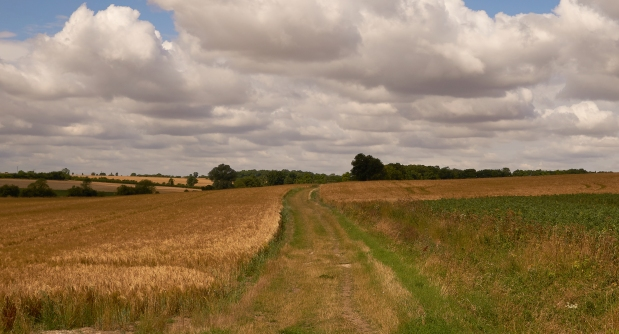 A ramble in South Cambs
