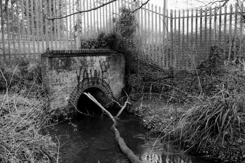 Blog old footbridge 13