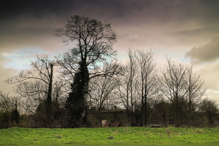 Blog Old Footbridge 4