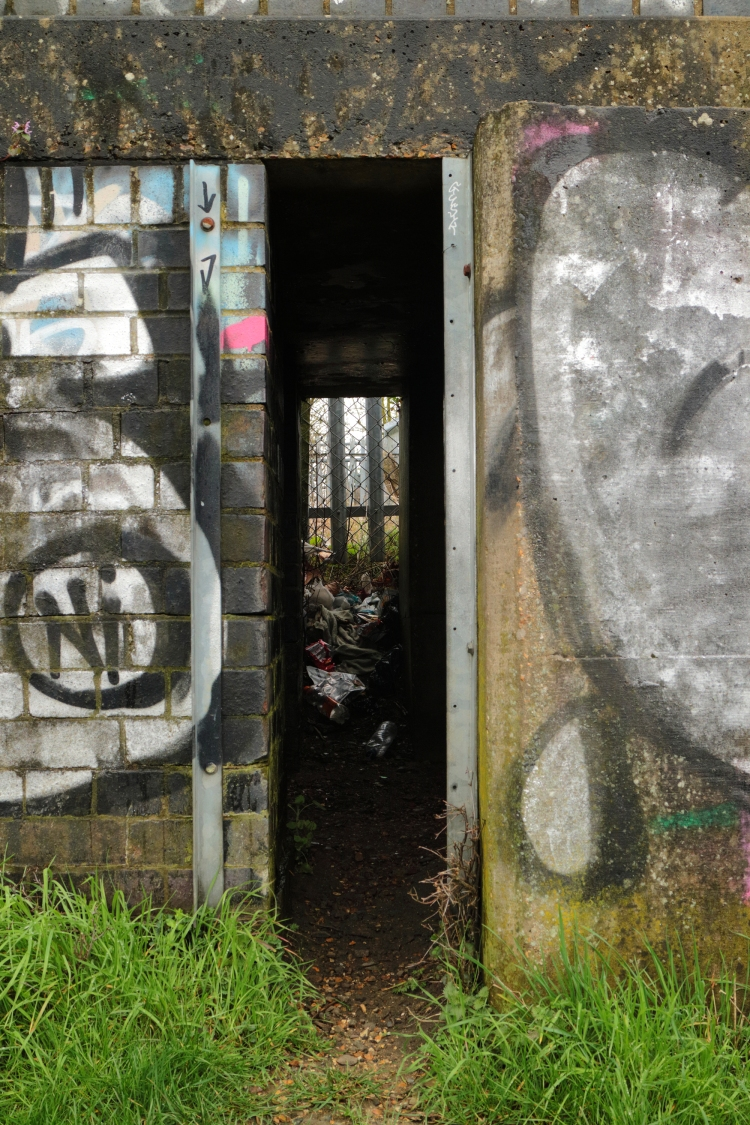 Blog old footbridge11